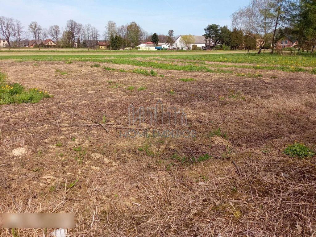 Działka rolna na sprzedaż Międzyrzecze Dolne  810m2 Foto 3