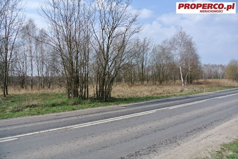 Działka inna na sprzedaż Kielce, Szybowcowa  4838m2 Foto 2
