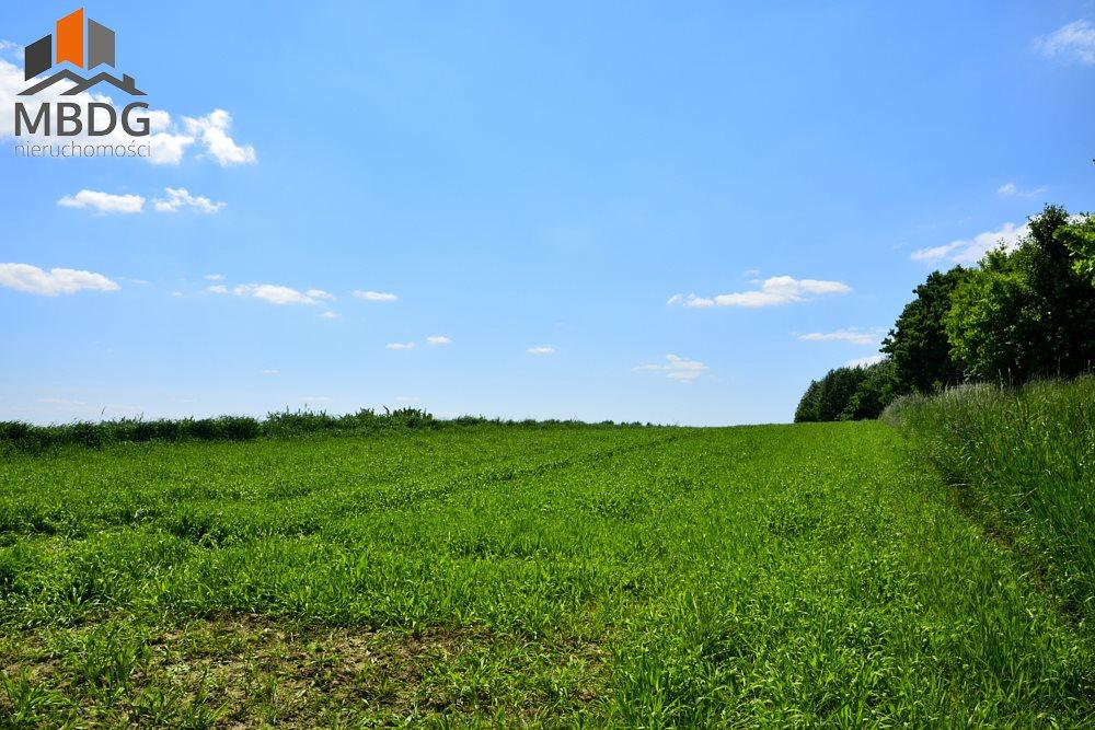 Działka rolna na sprzedaż Czułów  16800m2 Foto 6