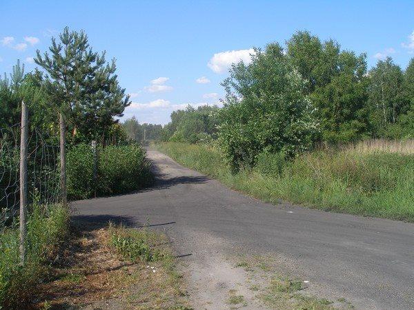 Działka siedliskowa na sprzedaż Parlino  11000m2 Foto 2