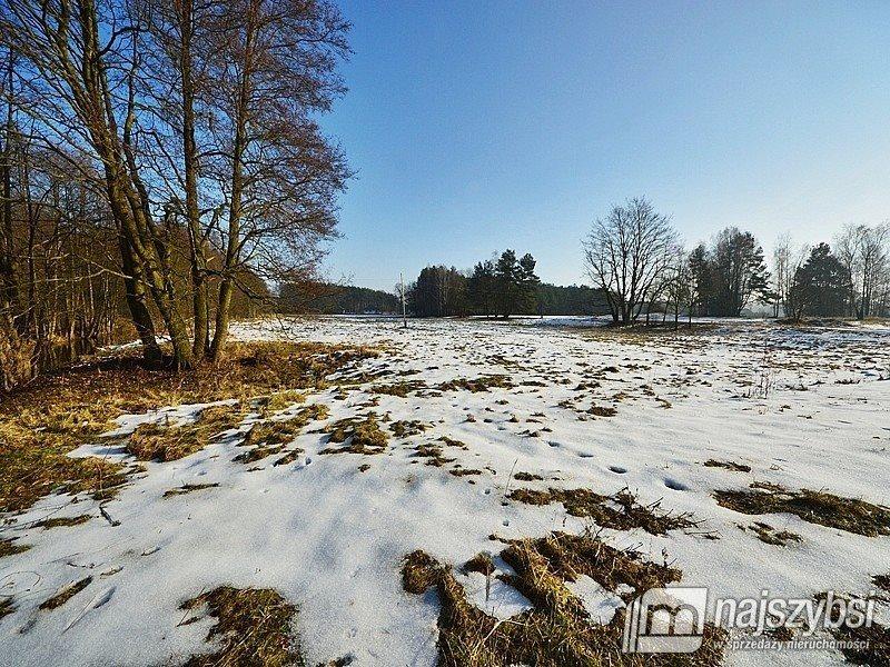 Działka inwestycyjna na sprzedaż Tanowo, wieś  3233m2 Foto 4