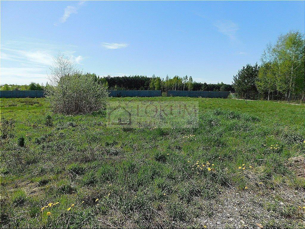 Działka rolna na sprzedaż Małęczyn  1500m2 Foto 3