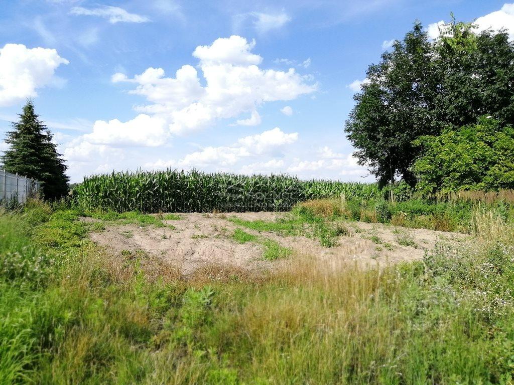 Działka rolna na sprzedaż Szydłów  1800m2 Foto 6