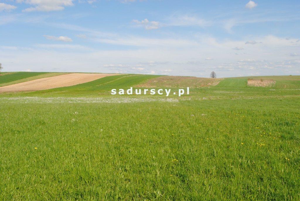 Działka rolna na sprzedaż Ściborzyce  34334m2 Foto 1