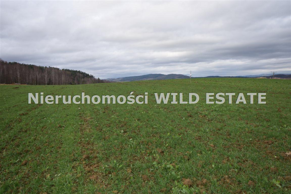 Działka rolna na sprzedaż Solina, Berezka  9520m2 Foto 9