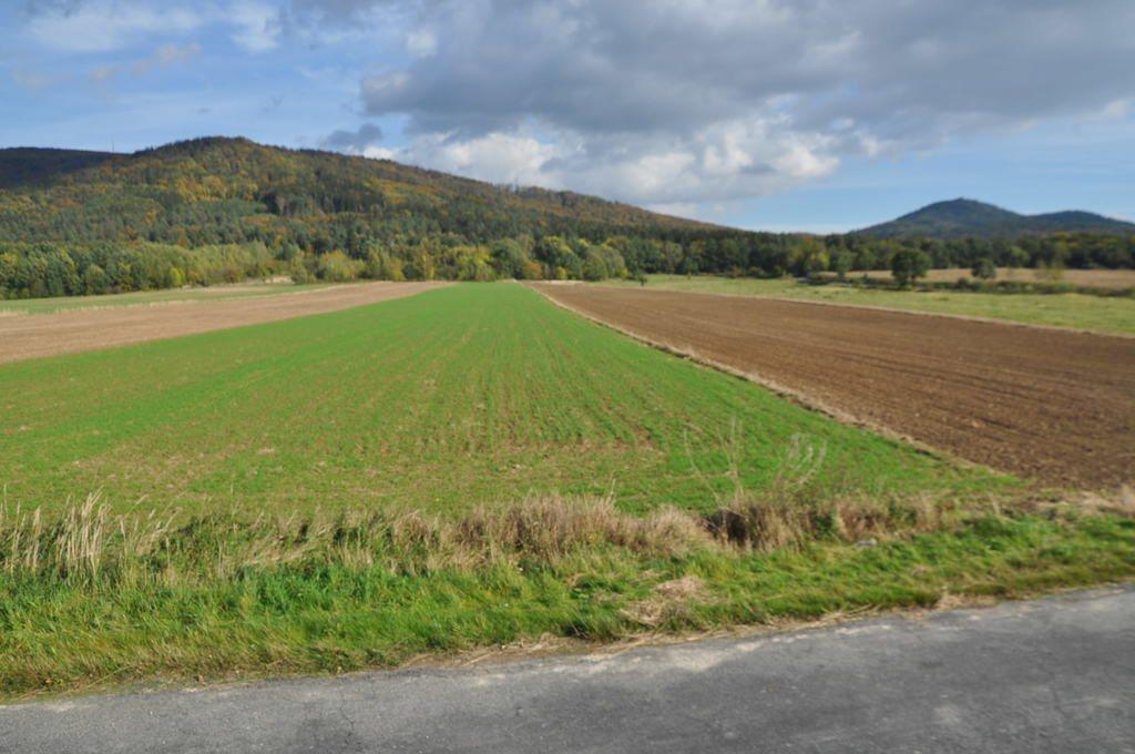 Działka rolna na sprzedaż Mysłaków  29500m2 Foto 6