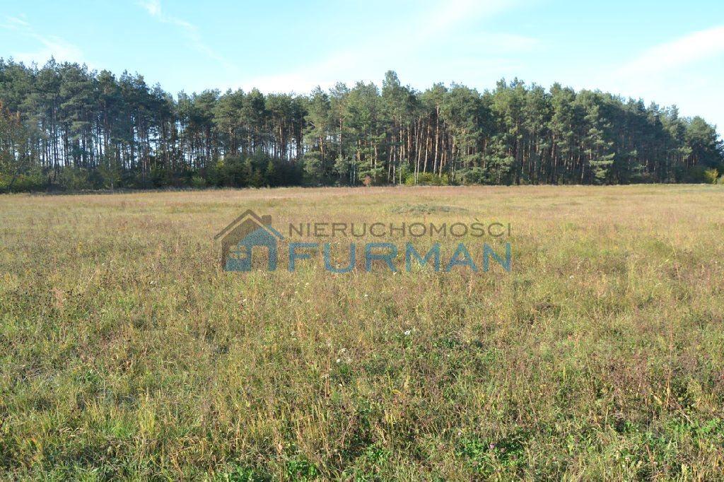 Działka rolna na sprzedaż Gościejewo  45100m2 Foto 7