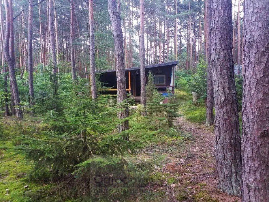 Dom na sprzedaż Łosie  50m2 Foto 4
