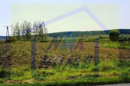Działka siedliskowa na sprzedaż Czarne Dolne  1467m2 Foto 1