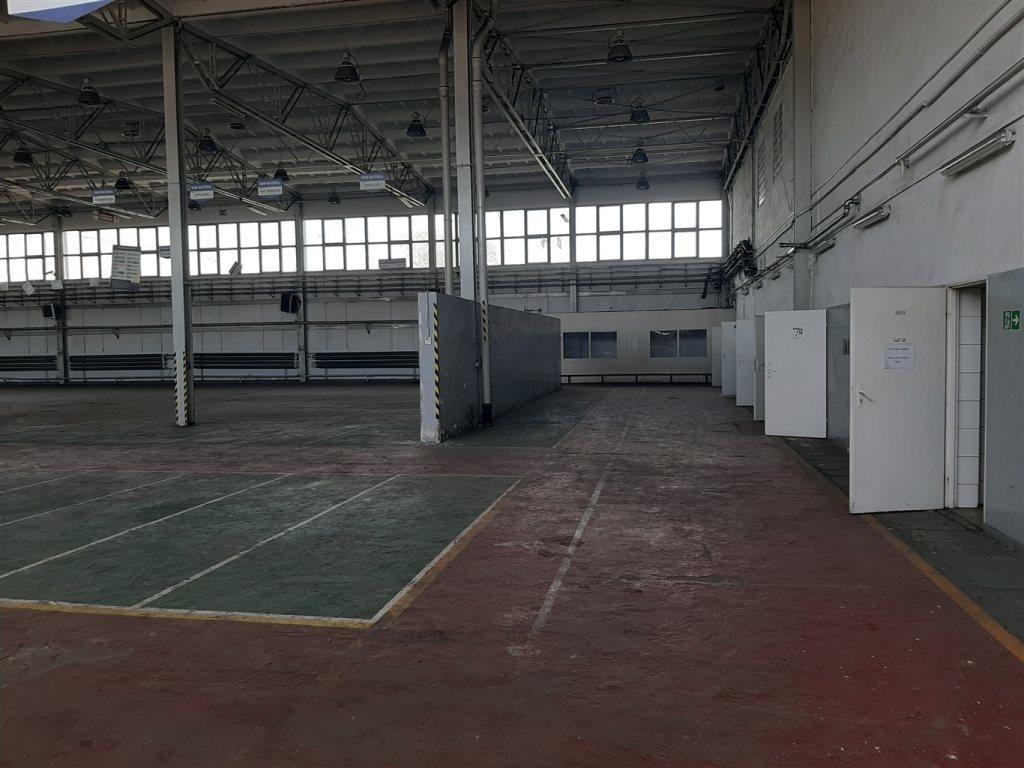 Lokal użytkowy na sprzedaż Gliwice  5000m2 Foto 6
