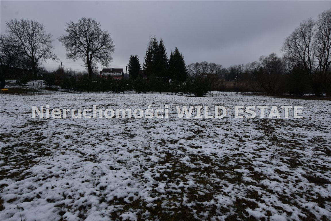 Działka rolna na sprzedaż Olszanica, Paszowa  4376m2 Foto 11