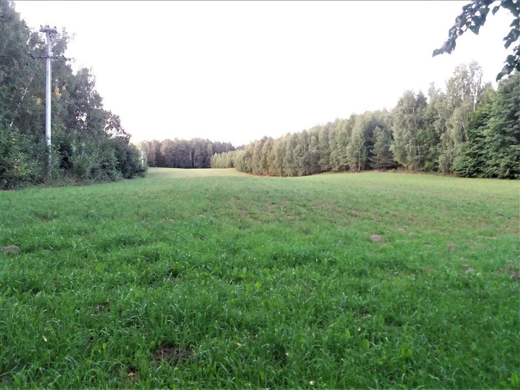 Działka rolna na sprzedaż Puc, Kościerzyna  60000m2 Foto 1