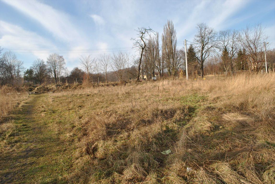 Działka budowlana na sprzedaż Mysłowice, Brzezinka  6000m2 Foto 3