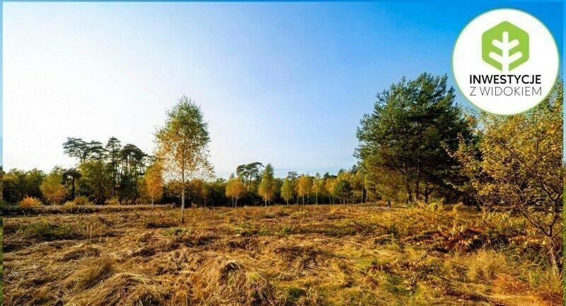 Działka budowlana na sprzedaż Kórnik, Działka sąsiedztwie Rogalińskiego Parku Krajobrazowego  1675m2 Foto 6