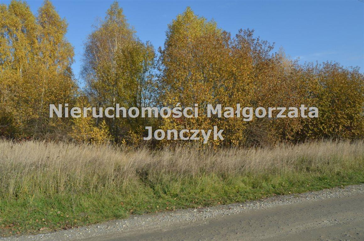 Działka inna na sprzedaż Zduńska Wola  5400m2 Foto 4