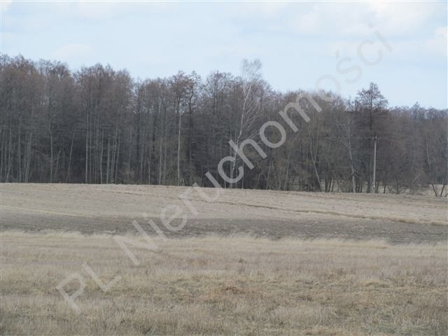 Działka rolna na sprzedaż Transbór  11200m2 Foto 8