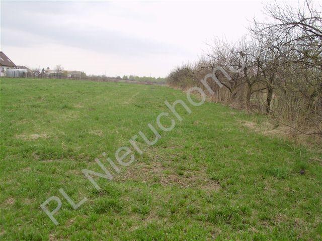 Działka rolna na sprzedaż Jeziora-Nowina  1000m2 Foto 1