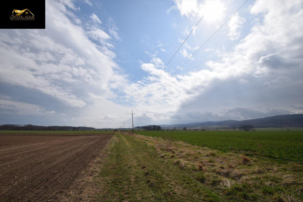 Działka rolna na sprzedaż Burkatów  23600m2 Foto 3