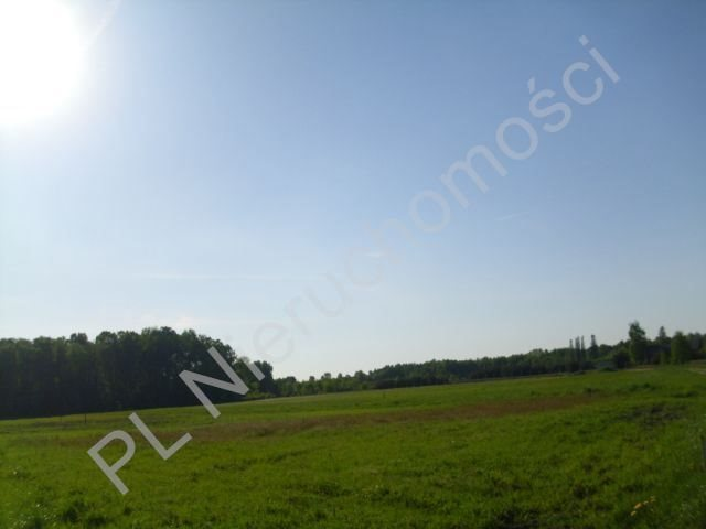 Działka budowlana na sprzedaż Szamoty  1648m2 Foto 2
