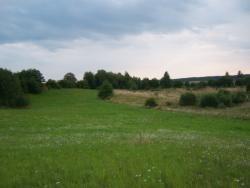 Działka rolna na sprzedaż Rogale  58200m2 Foto 7