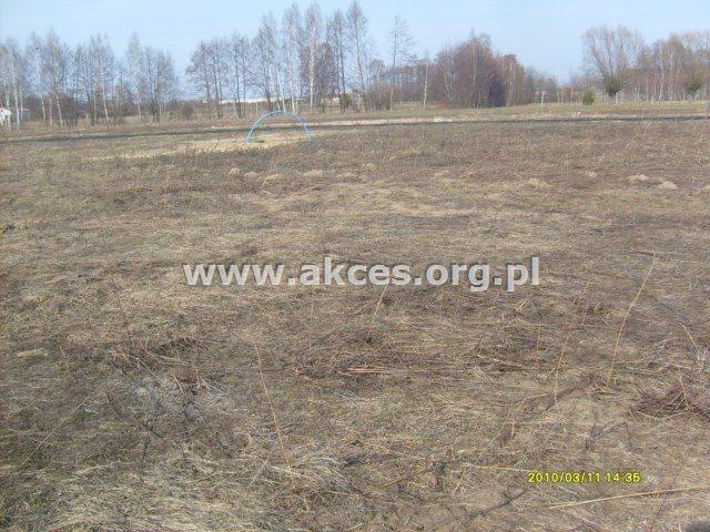 Działka rolna na sprzedaż Gościeńczyce  3000m2 Foto 3