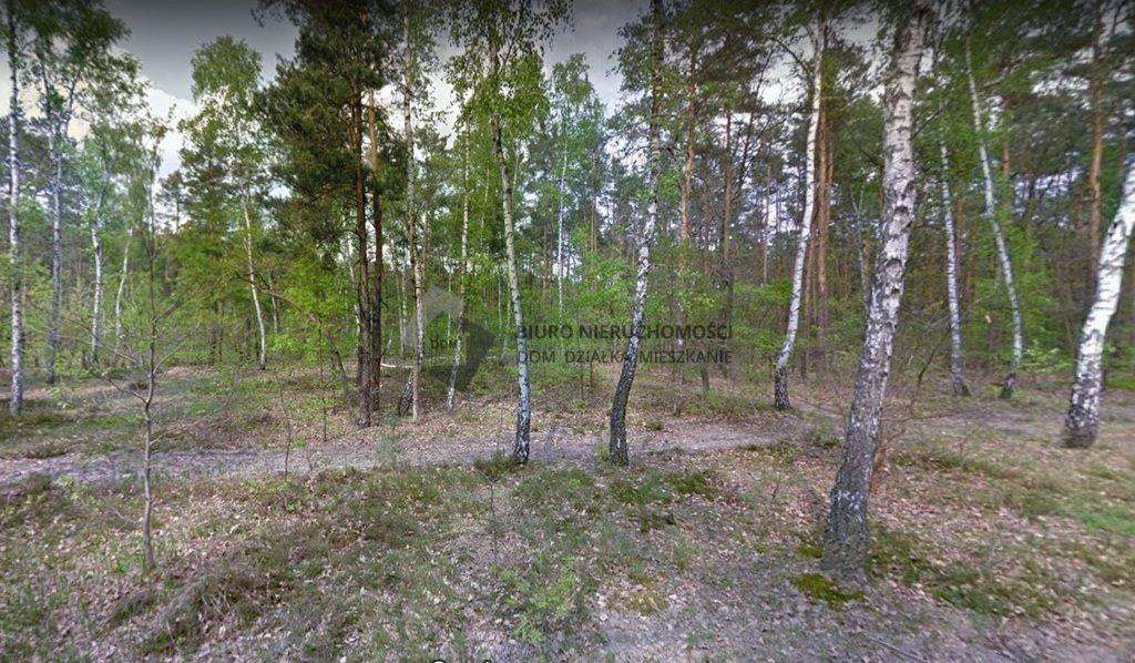 Działka leśna na sprzedaż Warszawa, Wawer, Anin  9616m2 Foto 6