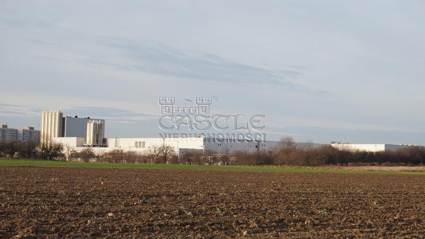 Działka inwestycyjna na sprzedaż Poznań, Nowe Miasto, Żegrze, Sarbinowska  12562m2 Foto 6