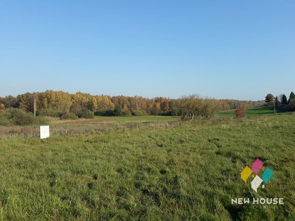 Działka rolna na sprzedaż Pupki, za wsią,przy lesie  3009m2 Foto 2