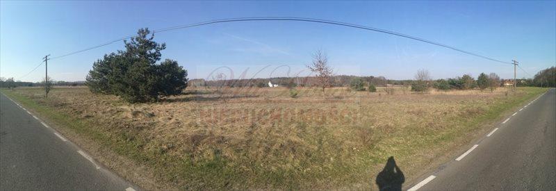 Działka budowlana na sprzedaż Nowa Wieś  3007m2 Foto 8