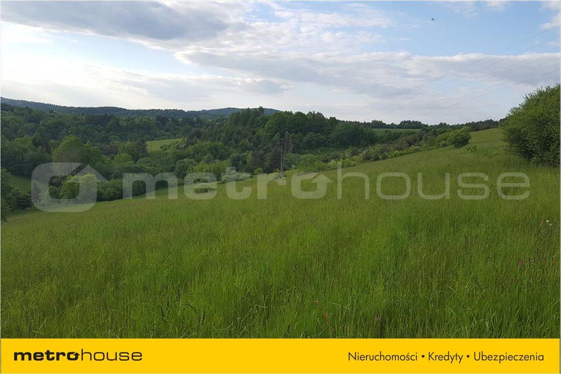 Działka rolna na sprzedaż Średnia Wieś, Lesko  12340m2 Foto 5