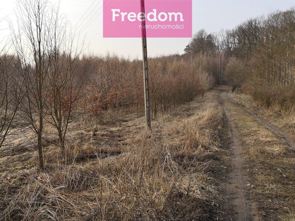 Działka leśna na sprzedaż Sobno  142300m2 Foto 8