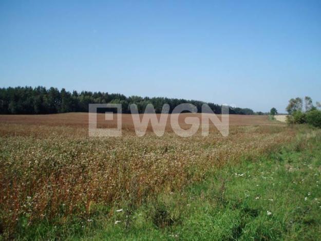 Działka inwestycyjna na sprzedaż Chocianowiec, Chocianowiec, Chocianowiec  153500m2 Foto 1