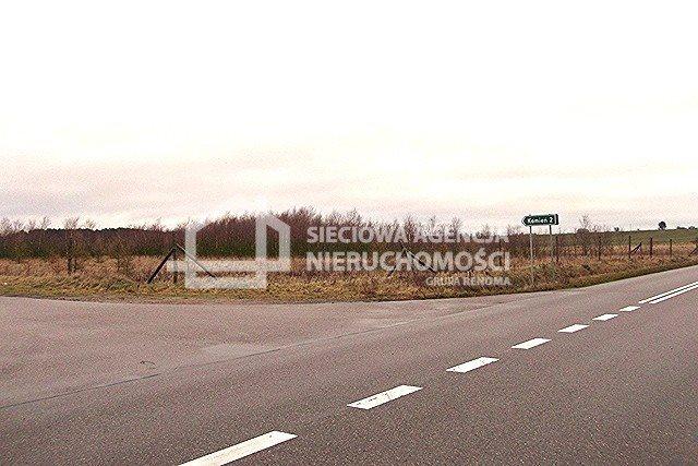 Działka leśna na sprzedaż Strzeczona  206330m2 Foto 2