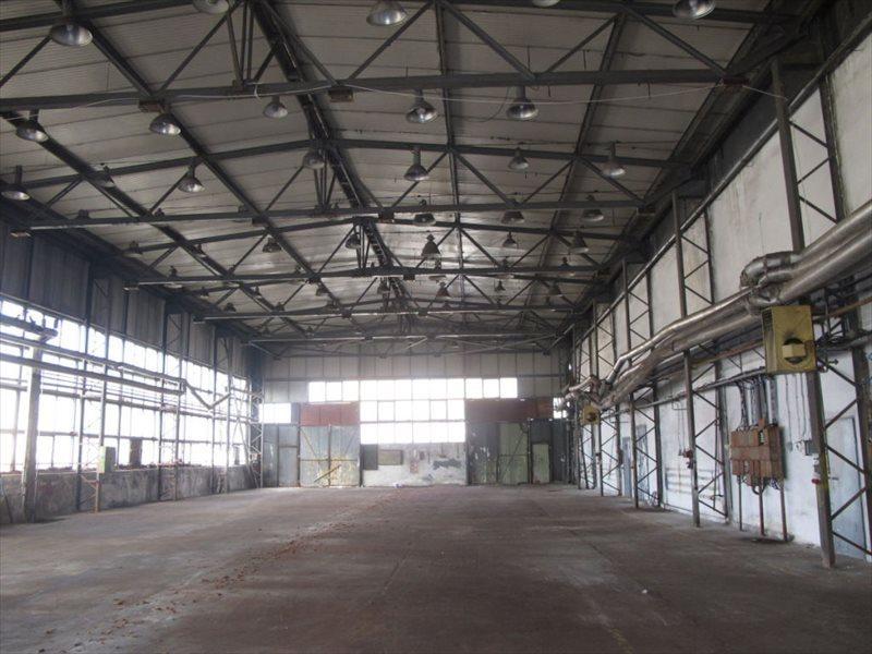 Lokal użytkowy na sprzedaż Żary  10325m2 Foto 2