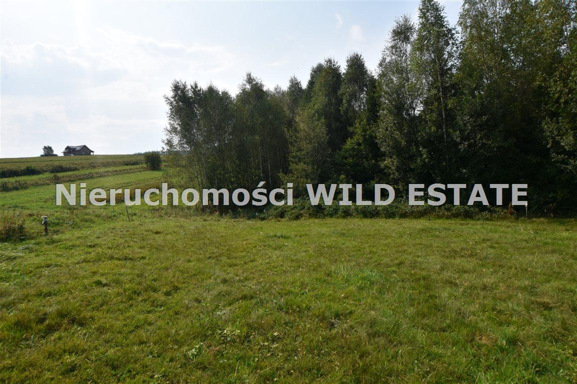 Działka rolna na sprzedaż Lesko, Weremień  3177m2 Foto 1