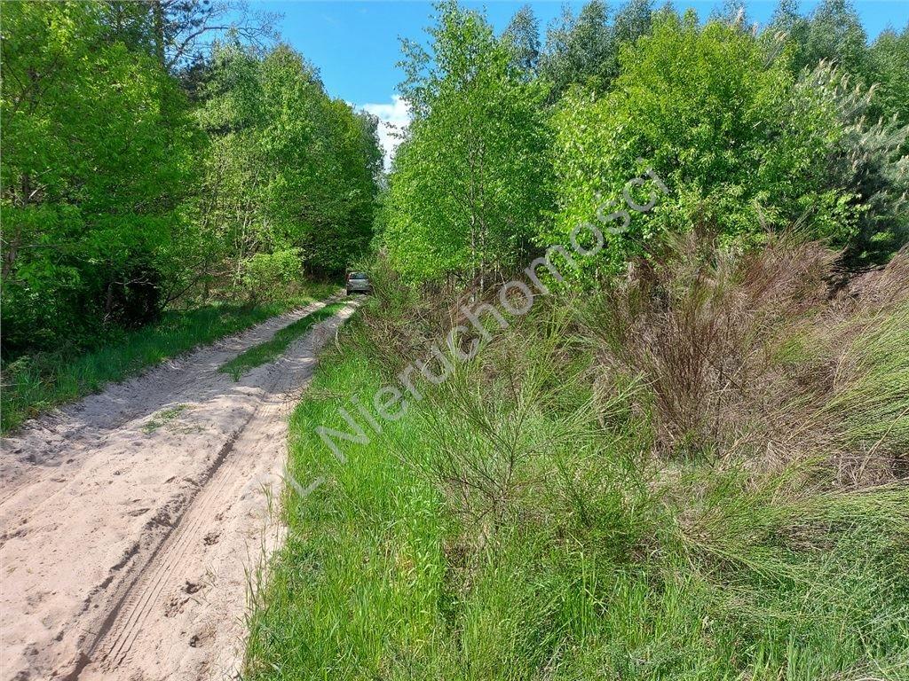 Działka rolna na sprzedaż Stare Groszki  12200m2 Foto 3