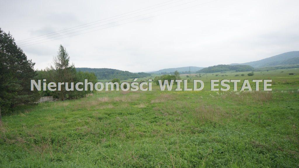 Działka budowlana na sprzedaż Olszanica, Uherce Mineralne  2500m2 Foto 1