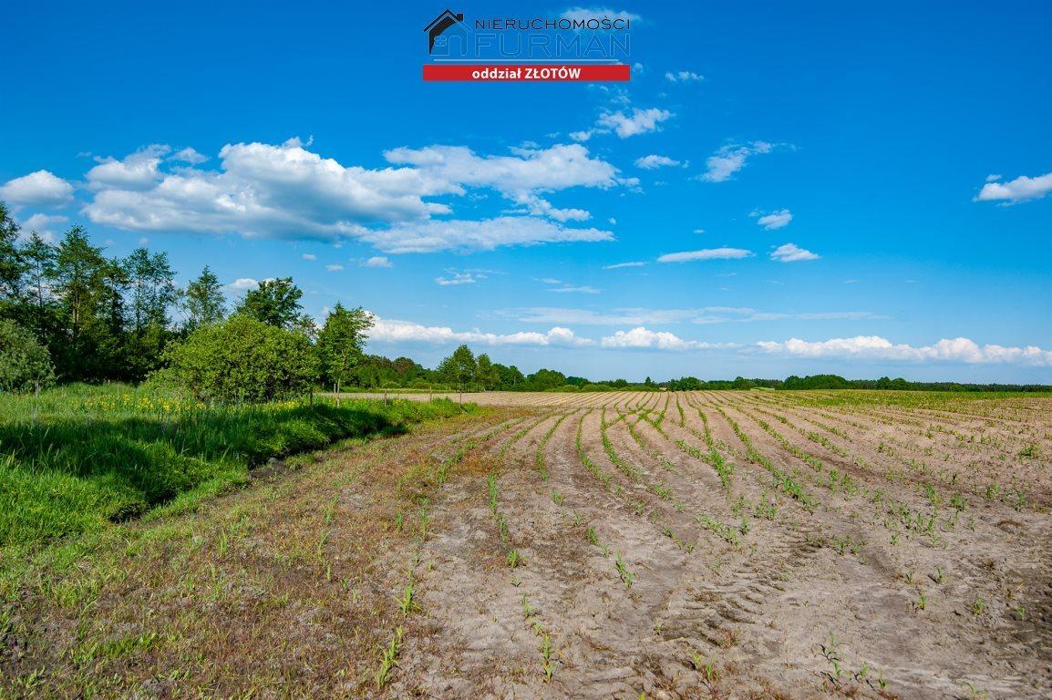 Działka rolna na sprzedaż Witrogoszcz-Kolonia  183634m2 Foto 1