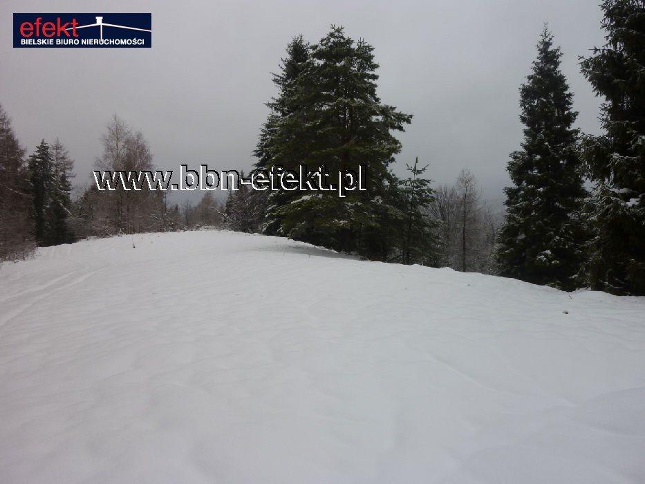 Działka leśna na sprzedaż Międzybrodzie Bialskie  3600m2 Foto 2