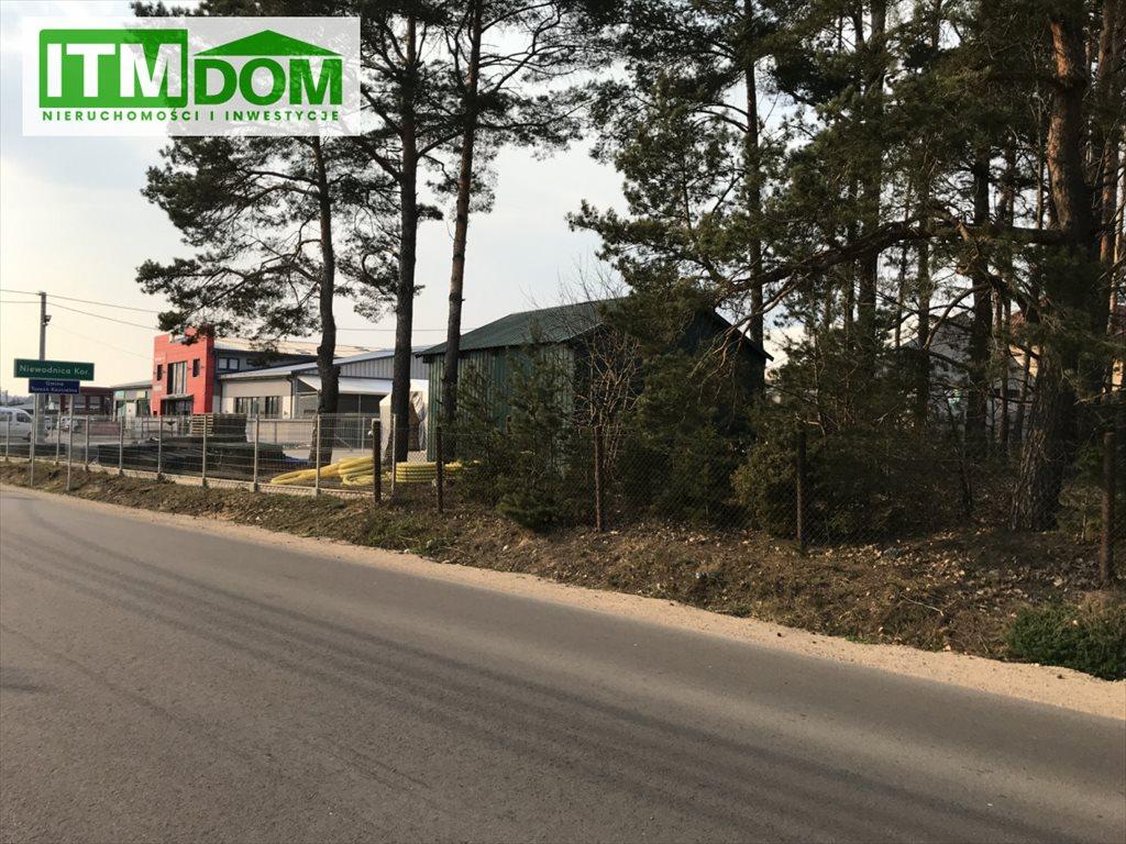 Działka rolna na sprzedaż Ignatki, Przemysłowa  3003m2 Foto 3