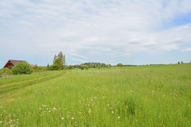 Działka rolna na sprzedaż Dobrzyniewo Kościelne  3196m2 Foto 1