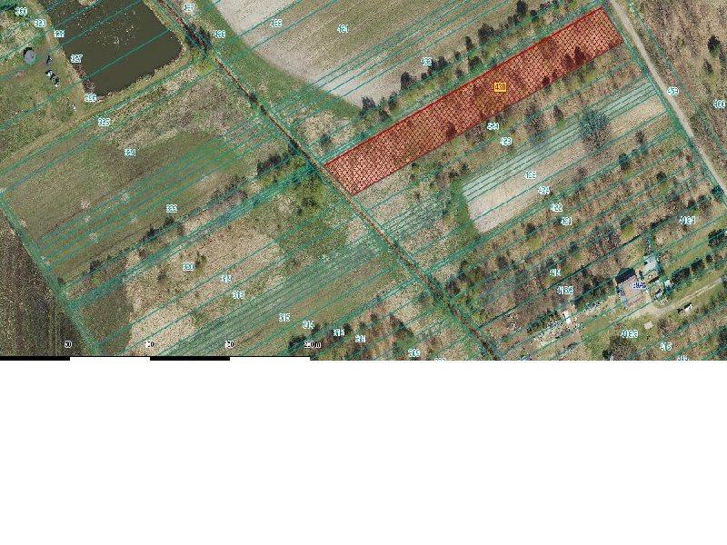 Działka budowlana na sprzedaż Częstochowa, Dźbów  7080m2 Foto 4