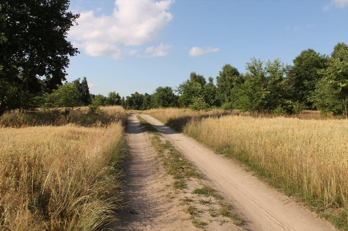 Działka rolna na sprzedaż Łagiewniki Nowe  9500m2 Foto 5