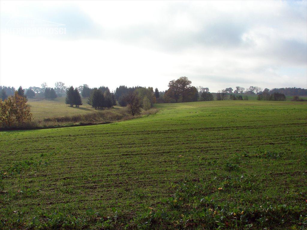 Działka rolna na sprzedaż Małdyty, ul. Ostródzka  134077m2 Foto 4