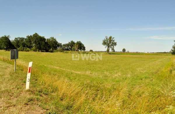 Działka rolna na sprzedaż Piersna, Piersna  8739m2 Foto 4