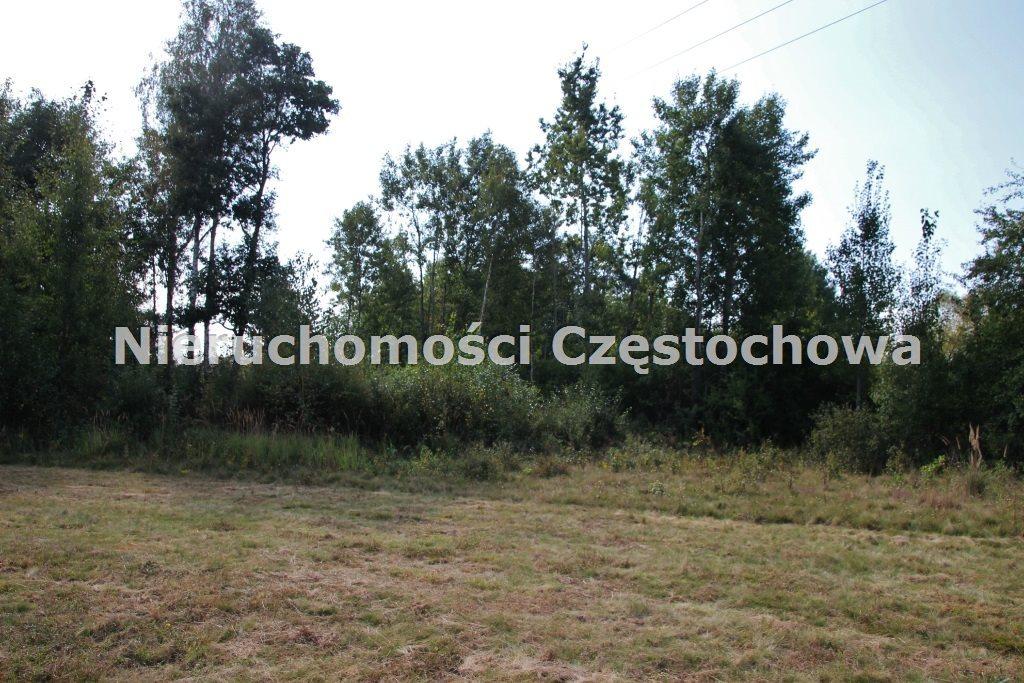 Działka inna na sprzedaż Kamienica Polska  4000m2 Foto 3