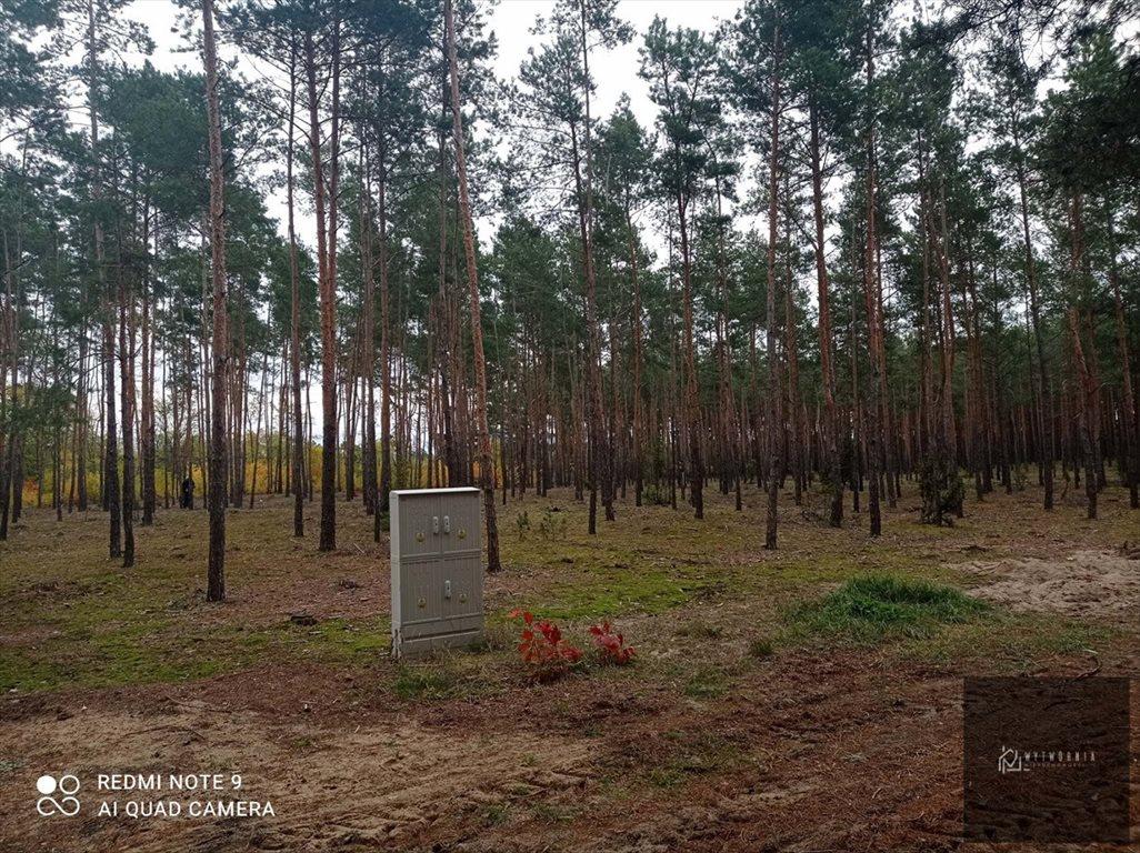 Działka leśna na sprzedaż Leśnik  1980m2 Foto 3