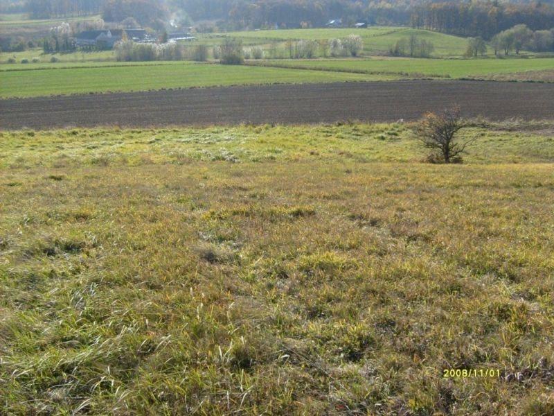 Działka rolna na sprzedaż Bolków  17400m2 Foto 2