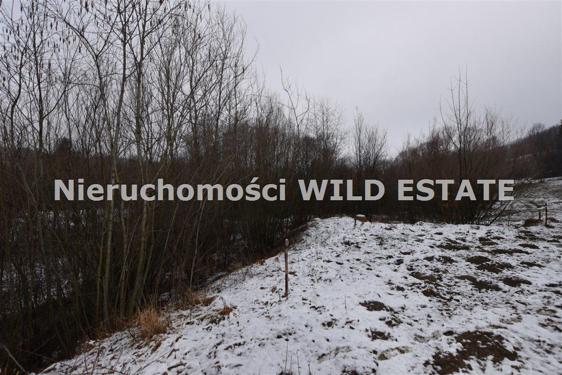 Działka rolna na sprzedaż Olszanica, Paszowa  5376m2 Foto 6