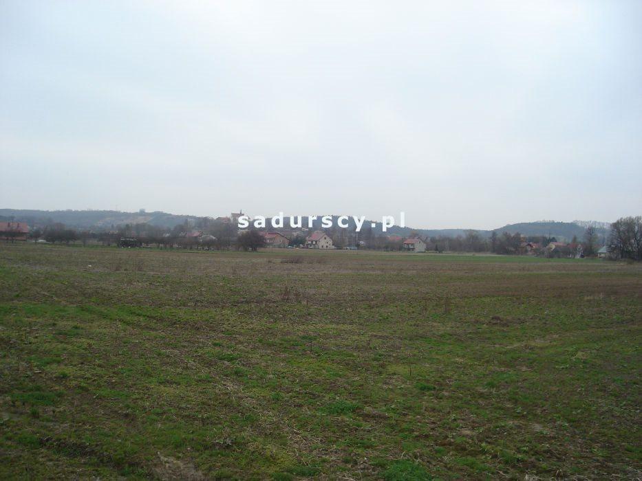 Działka inwestycyjna na sprzedaż Morawica  10000m2 Foto 7